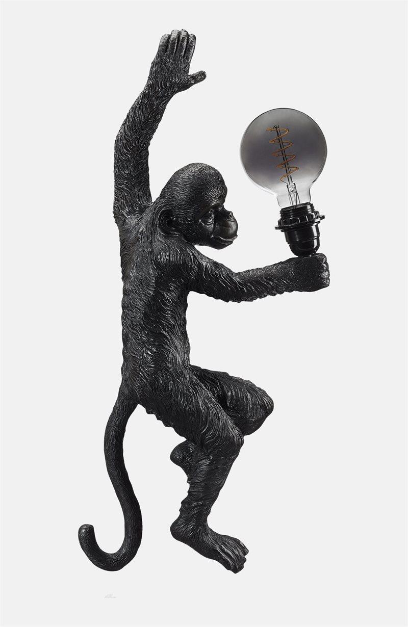 Seinävalaisin apina